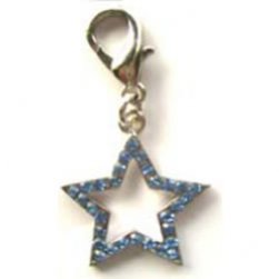Shimmering Crystal Star Charm