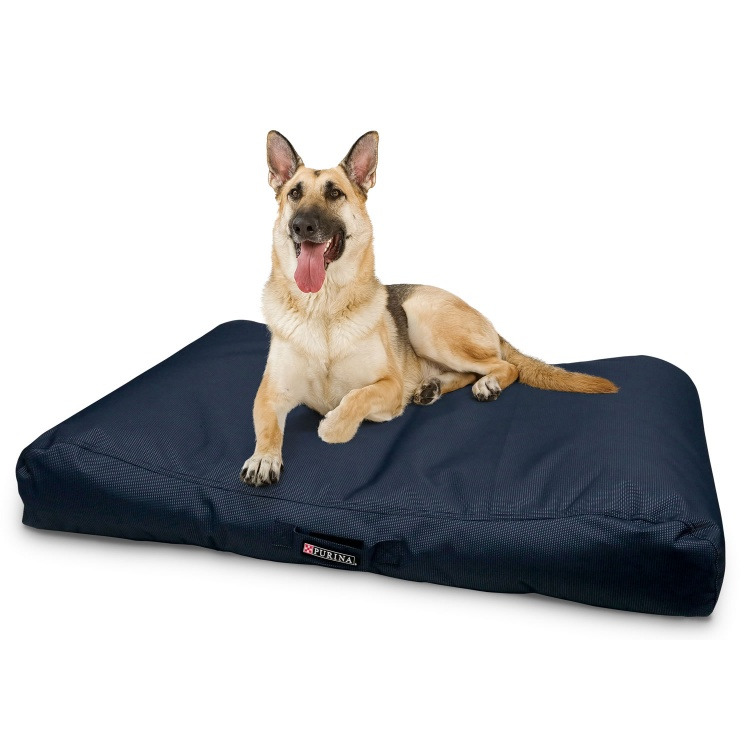 Dog Bedding : Cushions