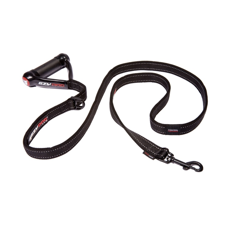 Control Trainer Leash