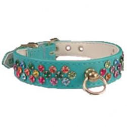 Sparkling Turquoise with Multi Crystal Collar