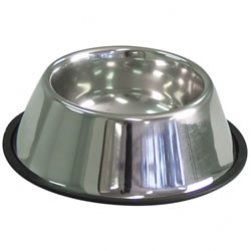 Spaniel Tapered Stainless Steel Bowl