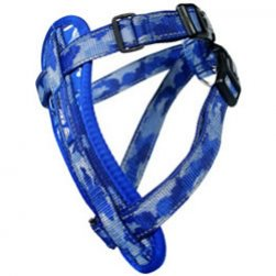 Harness (Arctic Blue)