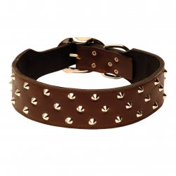 Studded Plain Leather Staffy Collar