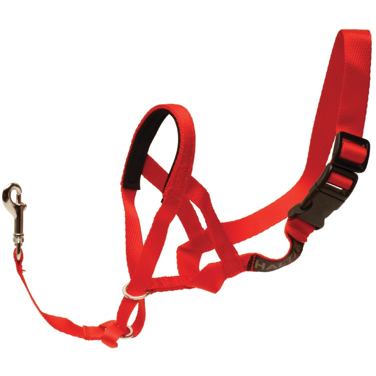 Halti Head Collar (Red)