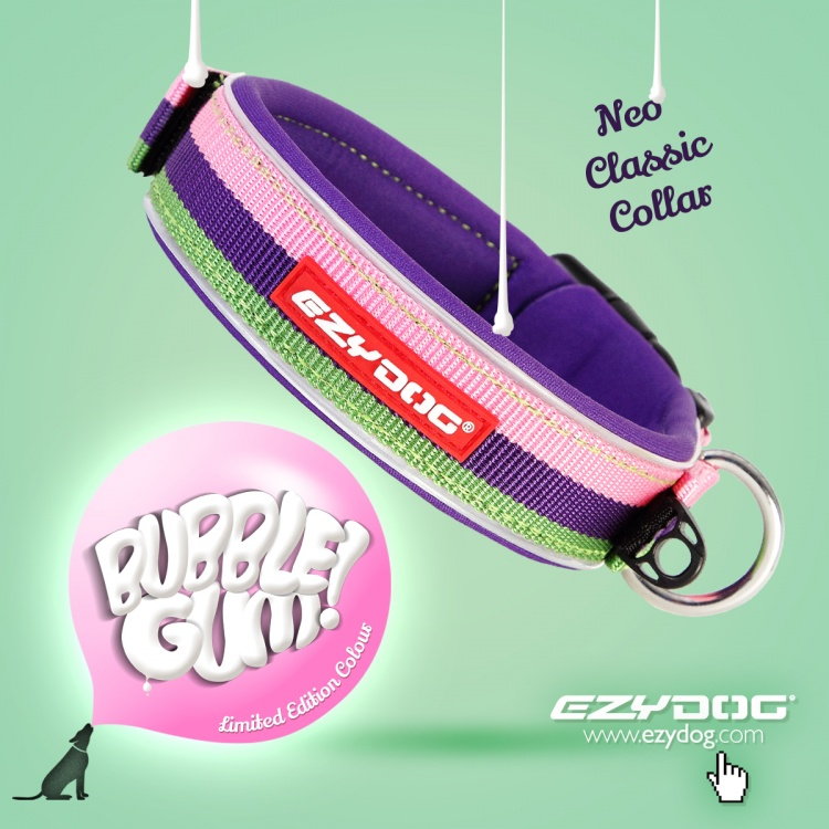 Neoprene Collar - Classic Bubble Gum