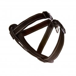 Harness (Black)