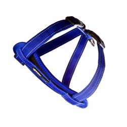 Harness (Blue)